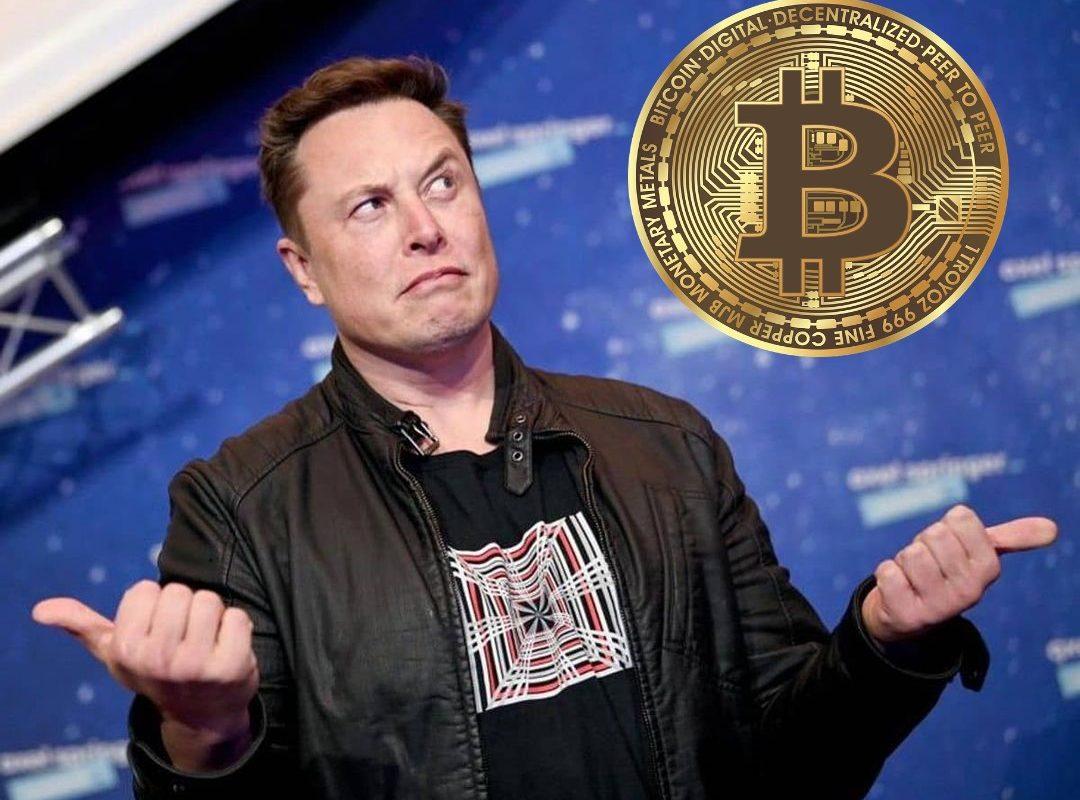 Elon Musk kauft Bitcoin