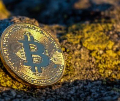 Bitcoin Trading Hodln